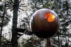 هتل درختی در ونکوور کانادا که میهمانان را یاد کودکی اشان می اندازد