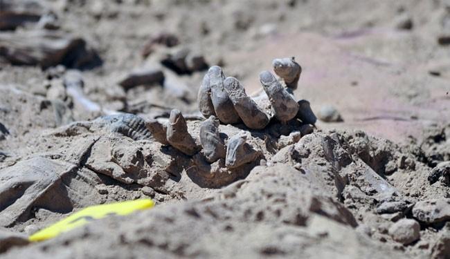 کشف ۲ گور دسته جمعی دیگر قربانیان داعش در غرب موصل