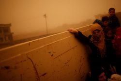 Iraqi people flee the Islamic State stronghold of Mosul in al-Samah neighborhood, Iraq. REUTERS/Mohammed Salem