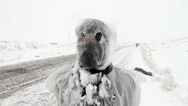 عکس های برف در مشهد