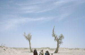 گزارش تکان دهنده Wired از خشکسالی در جنوب شرقی ایران: قطع آب هیرمند، نفس هامون را گرفت