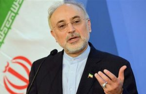 صالحی: ما به خاطر اختلافات سیاسی که در داخل کشور داریم نگذاشتیم شهد عزتمندی را ملت بهخوبی بچشند
