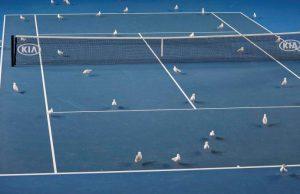 تصاویری از تنیس آزاد ملبورن در استرالیا