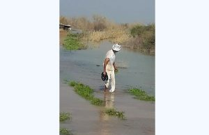 سیاستهای غلط انتقال آب فاجعه آفریدند/ گره کار به دست مردم باز شد، مسوولان تماشاچی بودند
