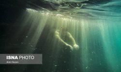 عکس های منتخب/ تصاویر دیدنی«امین نظری» از دنیای زیر آب